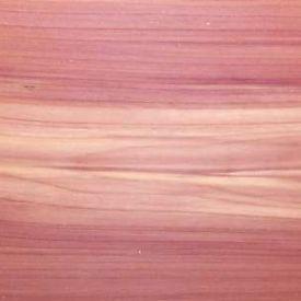 עץ סידר