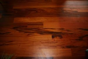 עץ טייגרווד