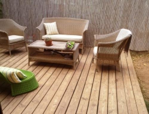 דק אורן – מאפיינים, סוגי עץ אורן וטיפול